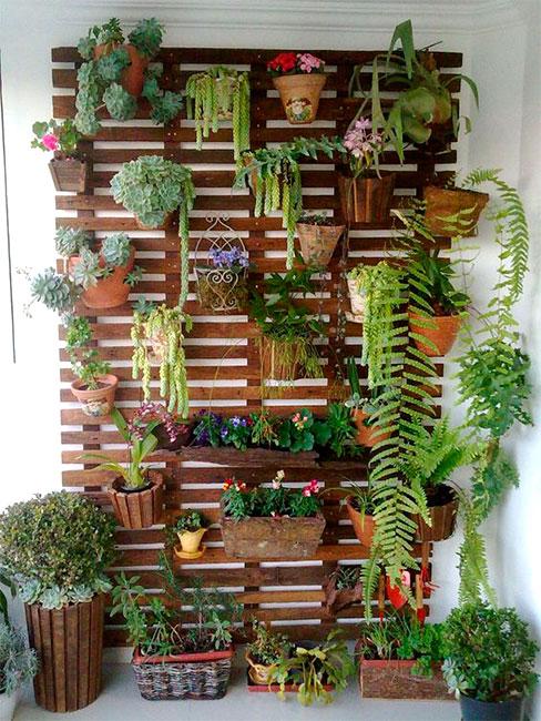 Jardim Simples e Barato