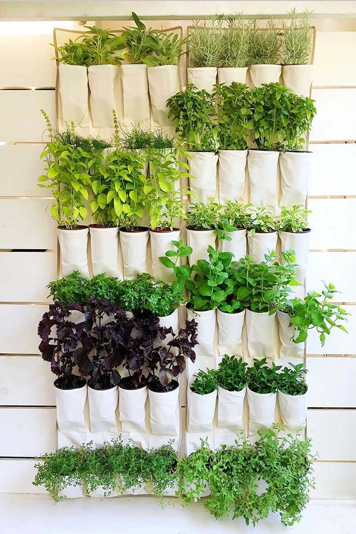 Como fazer uma horta vertical